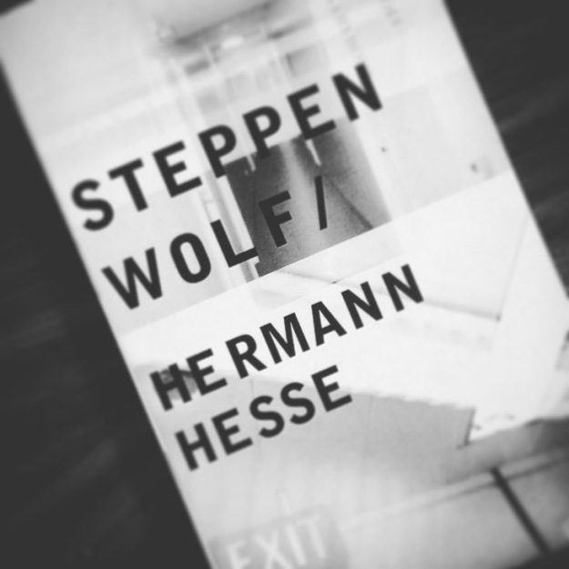 steppenwolf-by-hermann-hesse.jpg